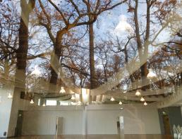 La Chesnaie du Roy (au Parc Floral de Paris)